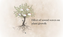 Copy of Effect of sound waves on plant growth