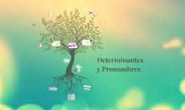 Copy of Adjetivos determinativos y Pronombres