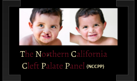 The Northern California Cleft Palate Panel