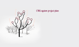 CMS system project plan