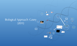 Biological Approach: Casey (2011)