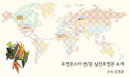 포켓몬스터 썬/문 실전포켓몬 소개
