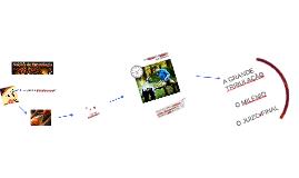 Noções de Escatologia