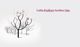 Latin Prefixes Section One