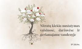 Copy of Nitratų kiekio nustatymas vaisiuose ir daržovėse