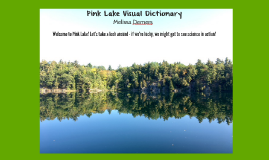 Pink Lake Visual Dictionary