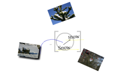 The Snow  - January