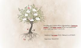 Copy of CEREN APALI MEHMET CAN DURSUN PROJECT