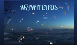 Copy of MAMIFEROS