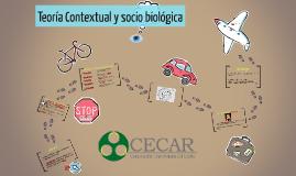 Perspectiva Contextual y evolutiva sociobiológica