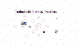 Trabajo de Plantas Practicas