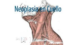 neckaproa