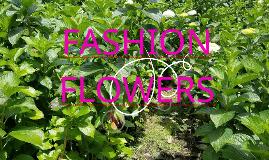 PRESENTACION FASHION FLOWERS