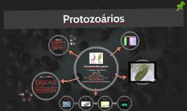 Copy of Protozoários