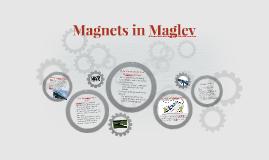 Magnets in Maglev