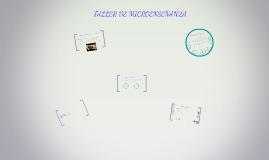 Copy of TALLER DE MICROENSEÑANZA