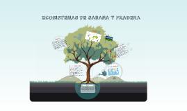 Copy of BIOMA DE SABANA Y PRADERA