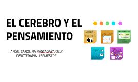 EL PENSAMIENTO - CEREBRO