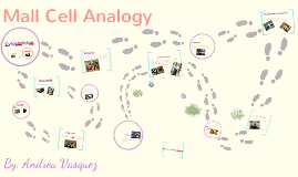 Copy of Mall Cell Analogy