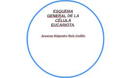 ESQUEMA GENERAL DE LA CÉLULA EUCARIOTA.
