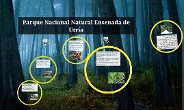 Parque Nacional Natural Ensenada de Utría