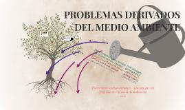 PROBLEMAS DERIVADOS DEL MEDIO AMBIENTE