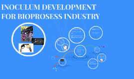 INOCULUM DEVELOPMENT FOR BIOPROSESS INDUSTRY