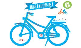 Como o Bike Anjo funciona e sua História