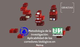 Metodologia de la investigación: