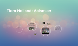 Flora Holland: Aalsmeer