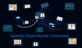 Copy of Aparato Reproductor Femenino