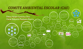 COMITE AMBIENTAL ESCOLAR (CAE)