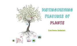 Distinguishing Features of Plants