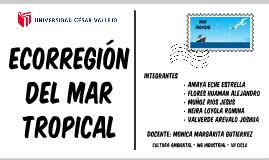 Copia de MAR TROPICAL - ECORREGIONES PERUANAS