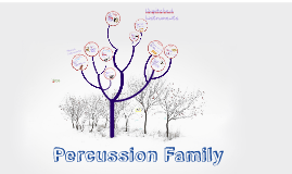 Copy of Percussion Family