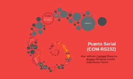 Copy of Puerto Serial (COM-RS232)