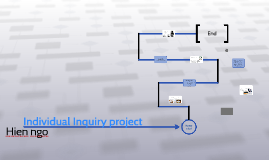 Individual Inquiry project
