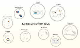 WCS Consultancy
