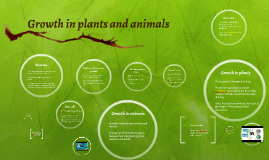 Growth in plants and animals