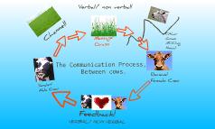 Communication Modle