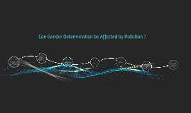 Can Gender Determination be Affected by Pollution ?