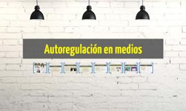Autoregulación en medios