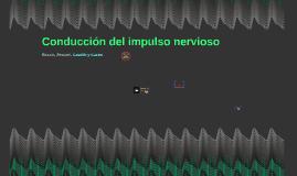 Conducción de impulso nervioso