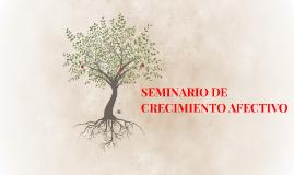 SEMINARIO DE CRECIMIENTO AFECTIVO