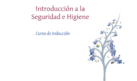 Copy of INTRODUCCION SEGURIDAD E HIGIENE