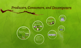 Copy of Producers, Consumers, Decomposers, and Food Chains