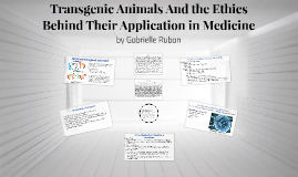 Transgenic Animals And the Ethics Behind Their Application i