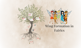 Wing Formation in Fairies
