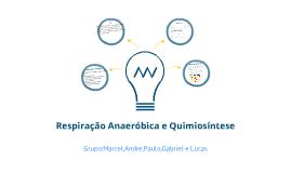 Copy of AV5-Biologia B Respiração Anaerobóica e Quimiossíntese