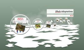 Dhole Adaptations